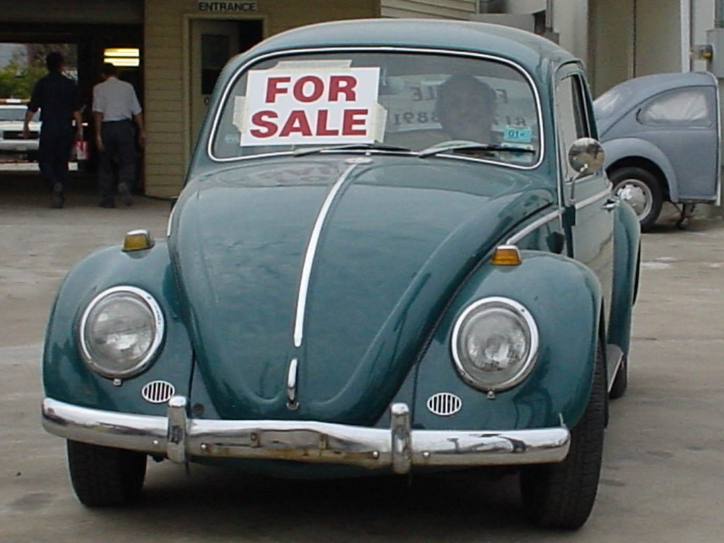 for-sale beetle